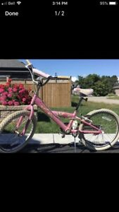 Girls bike for sale    (  young girl  7 to 9