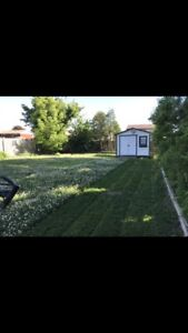 Lawn Services/Lawn Cutting/Lawn Maintenance/Lawn Care/Sod