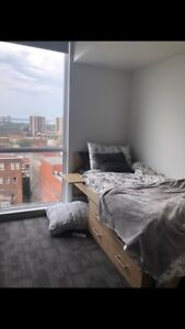 7 month sublet in beautiful downtown condo