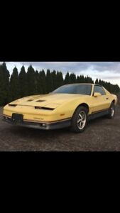 Looking for interior parts for an 86 Trans Am