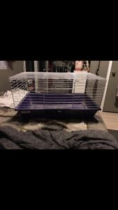 Small animal starter cage