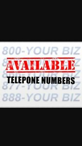 416,647,905 GOLD VIP PHONE NUMBERS FOR BUSINESS