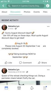 DOG SITTING JULY AND AUGUST DISCOUNT DAYS!
