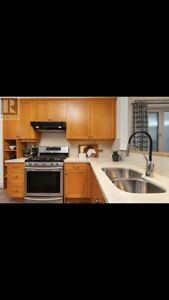 Kitchen Cabinets and Quartz Counter Tops