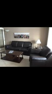 Room for rent for a working professional or mature student Kitchener / Waterloo Kitchener Area image 4