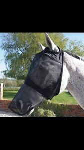 ISO Fly mask!