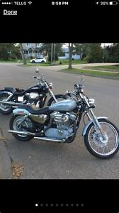 Harley Davidson XL883C low km/fast/upgrades