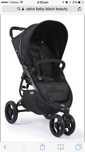 Velcro baby black beauty Mudgeeraba Gold Coast South Preview