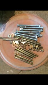 Lot of Carriage Bolts