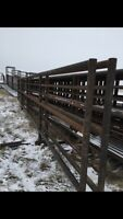 Cattle and farm equipment, signs, fire pits