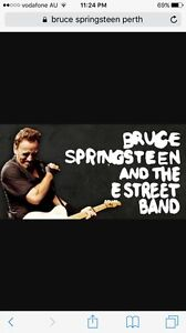 Bruce Springsteen 1xticket Caversham Swan Area Preview