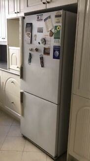 (Free) fridge