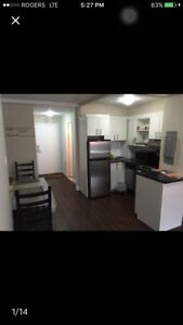 Downtown apartment 1 1/2 for sublet