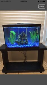 Fish tank / Aquarium 20 gallons