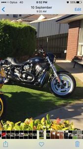 Harley night rod Firle Norwood Area Preview