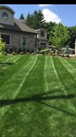 Lawn cutting, landscaping, garden, lawn care