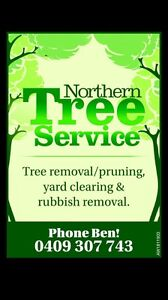 Arborist/groundsman Bulli Wollongong Area Preview