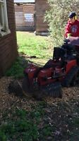 Stump Grinding and Tree Removal... London Forestry Services Ltd.