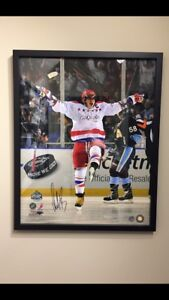 Alex Ovechkin Autographed Framed Picture