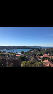 Looking for an awesome housemate in Mosman