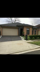 House mate , share accomidation Parramatta Parramatta Area Preview