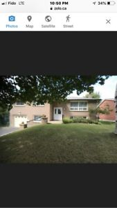 Rooms for Rent in North Barrie