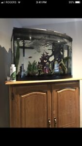 Bow 30 gallon tank everything included