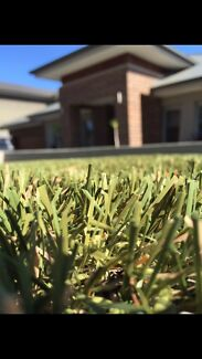 Primo Synthetic Grass & Landscaping