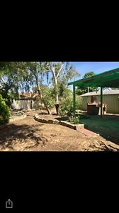 House for rent, 350 p/w Karrinyup Stirling Area Preview