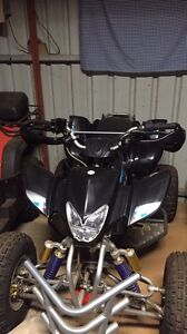 Fury 250cc quad Westminster Stirling Area Preview