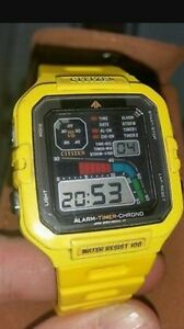 Wanted citizen windsurfing watch or parts Prospect Blacktown Area Preview