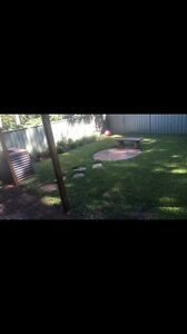 Landscaping, gardening and maintenance. Blacktown Blacktown Area Preview