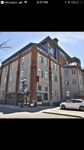 Gorgeous urban loft condo - Downtown Hamilton