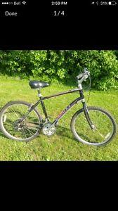 2015 Giant Sedona bike