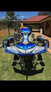 Arrow X1E Racing package with Rotax Max Engine (Go Kart) Brigadoon Swan Area Preview