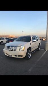 Cadillac Escalade Premium Luxury