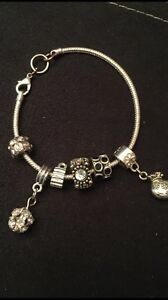 Charm Bracelet with Charms included