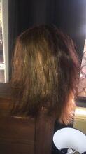 mannequin hairdressing head Brassall Ipswich City Preview