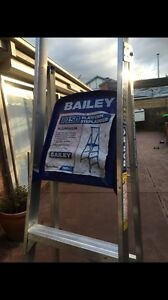 Bailey ladder Cremorne Yarra Area Preview