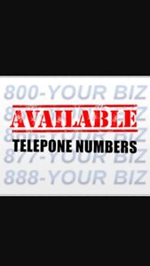 PREMIUM PHONE NUMBERS FOR OFFICE SPACE BUSINESS CARDS FLYERS