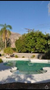 Palm Desert Rental