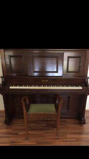 Maxim Piano