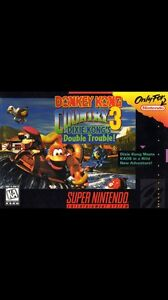 ISO Donkey kong country 3 SNES