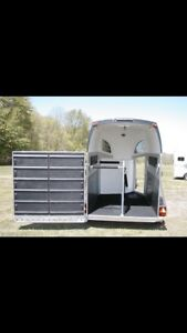 ISO step up horse trailer to rent