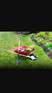 Affordable lawn mowing Penrith Penrith Area Preview