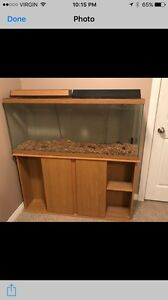55 gallon tank and stand