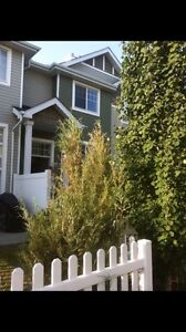 Townhouse for rent west Edmonton  *reduced price