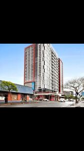 1 bedroom apartment for rent in the Valley Fortitude Valley Brisbane North East Preview