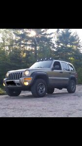 Jeep liberty renegade edition