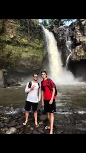 2 hard working and enthusiastic Backpackers looking for Farmwork
